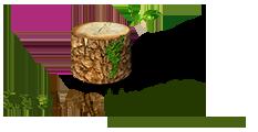 Eco Log Homes